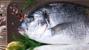 Sel pour poisson
