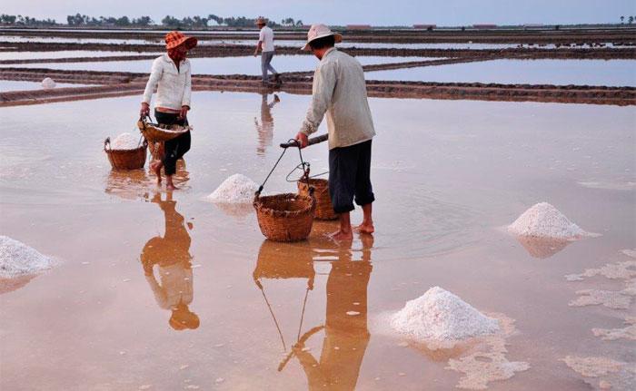 exploitation du sel